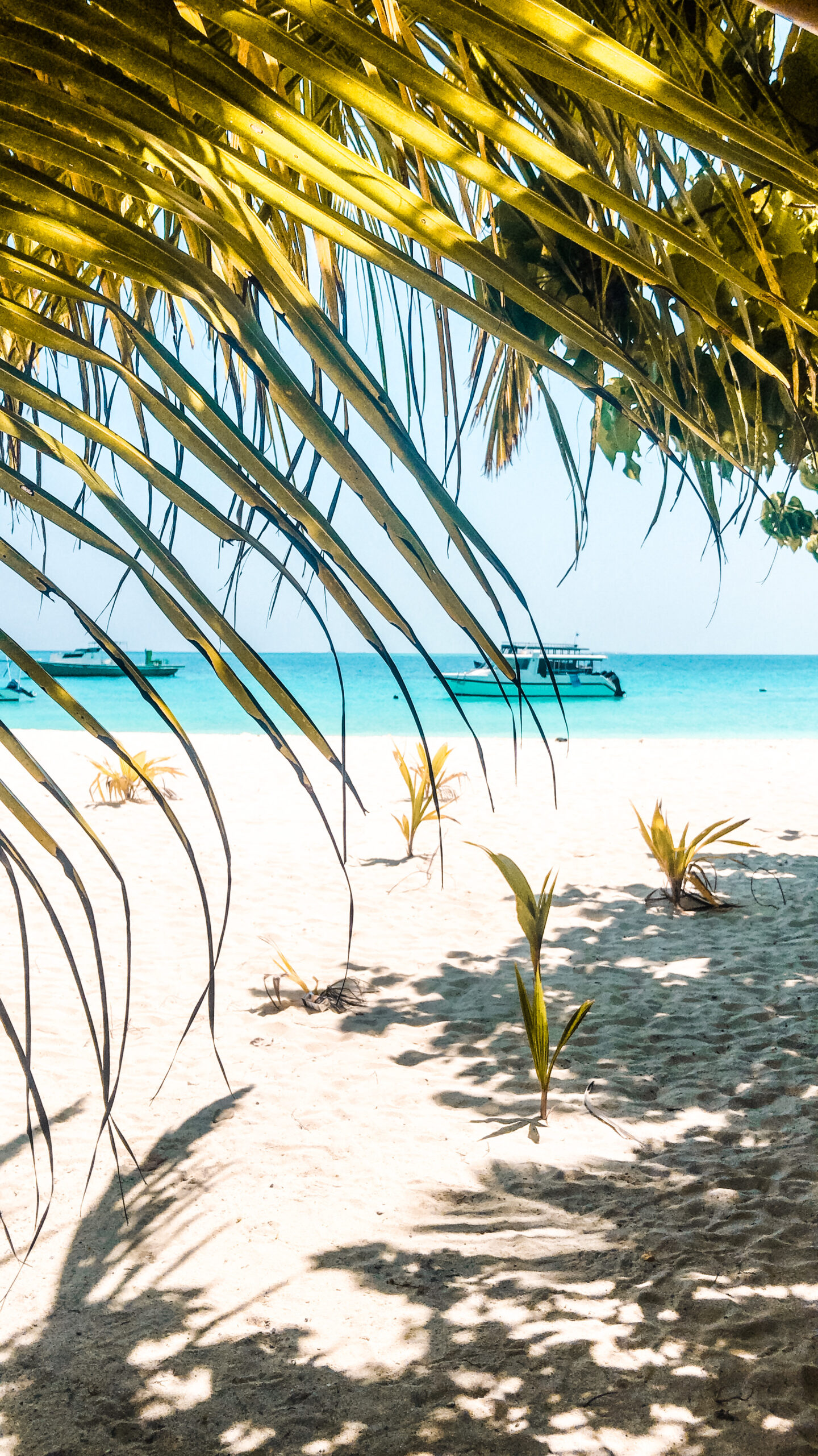 reisblog tropische bestemmingen