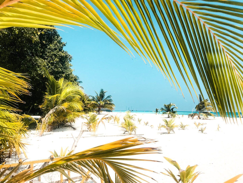 Malediven reis